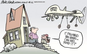 domestic-drone